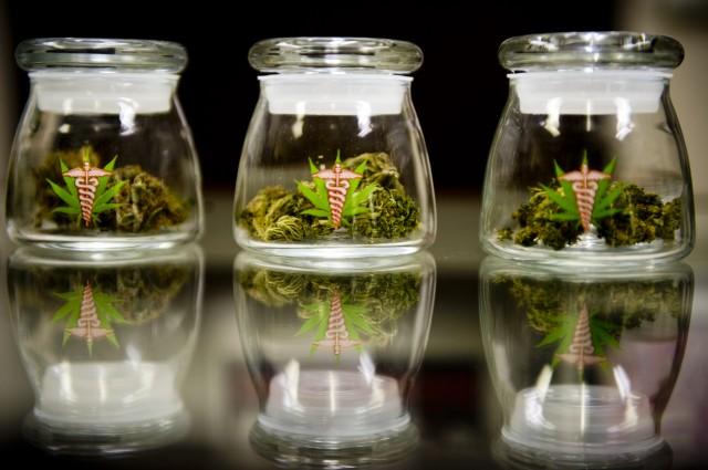 Marijuana-Legalization-Florida