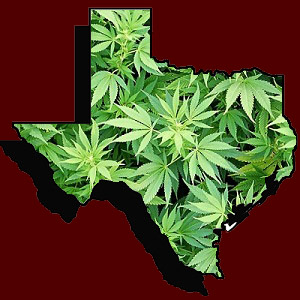texas-supports-marijuana