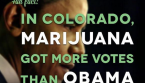 republicans support marijuana