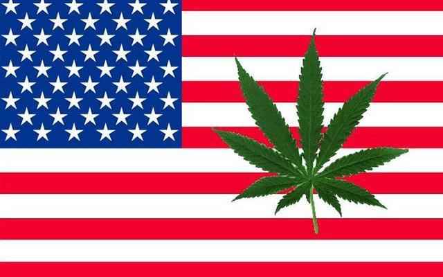 8 States Most Likely to Legalize Marijuana Next
