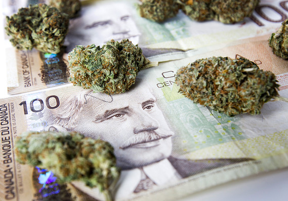 PayPal-Founderu2019s-Venture-Capital-Firm-Invests-In-Marijuana-Business