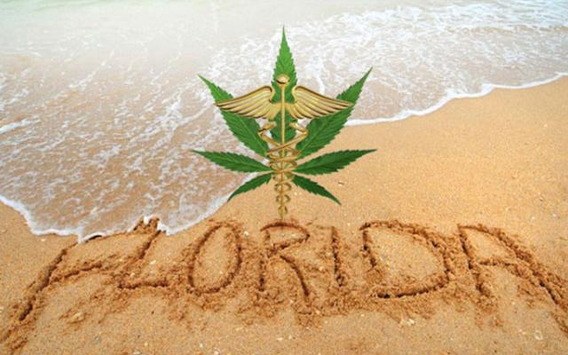 Florida-Could-Legalize-Both-Medical-and-Recreational-Cannabis-in-2016