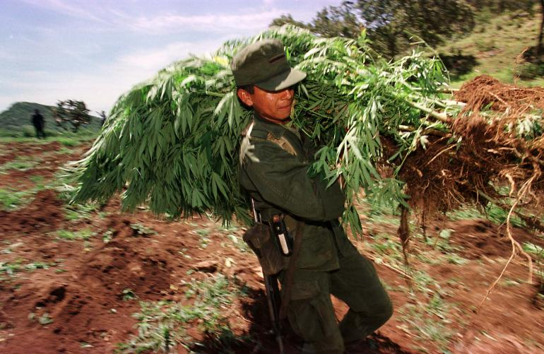 Is-Mexico-On-Its-Way-To-Legalize-Marijuana