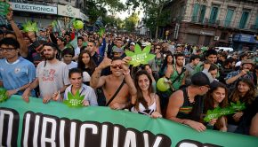 Medical Marijuana on Uruguay_s Pharmacy Shelves in 2016