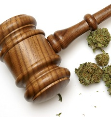 the pros and cons of the legalization of marijuana and the history of the criminalization of marijua The pros and cons of marijuana legalization legalizing marijuana: the public health pros and cons history help.