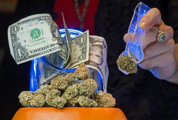 marijuana business vulnerable