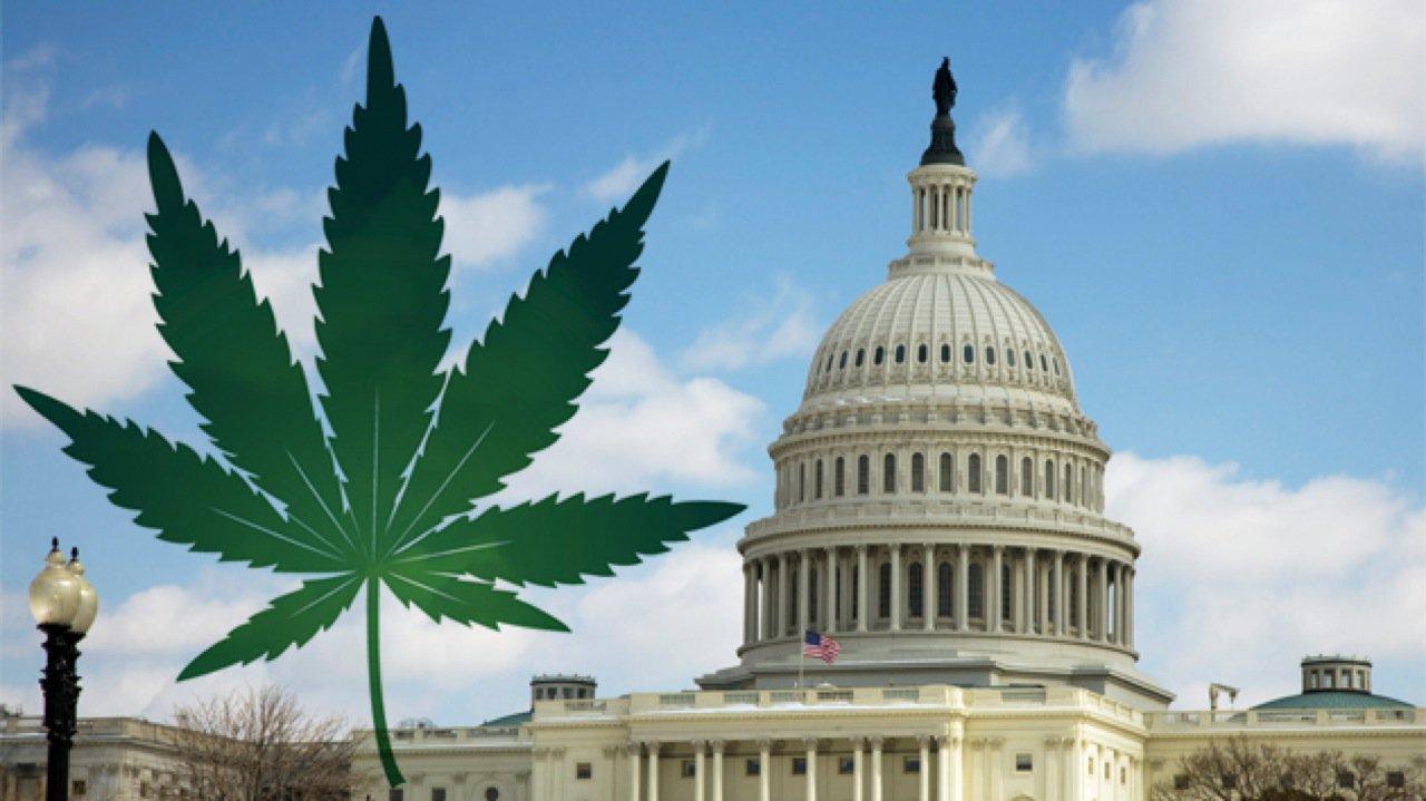 federal state marijuana laws