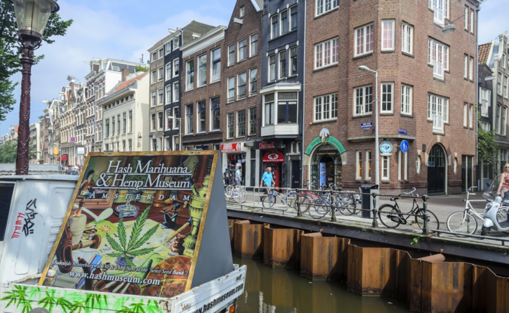marijuana friendly cities