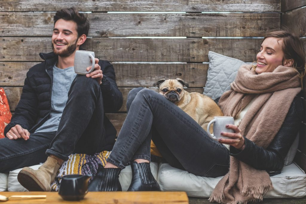 CBD Oil Use For Pets