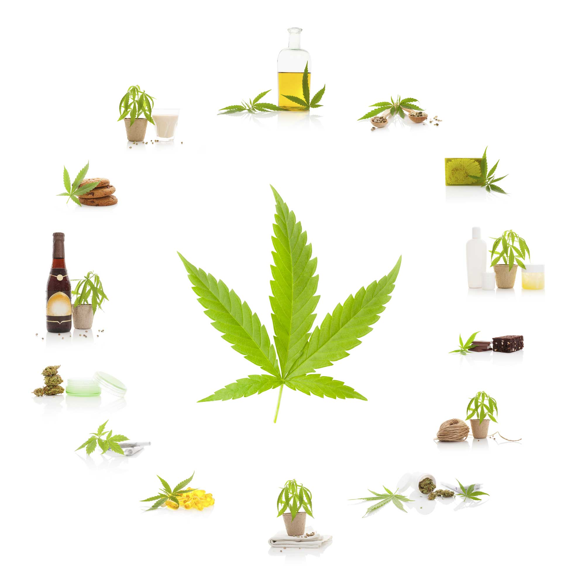 Cannabinoids Facts